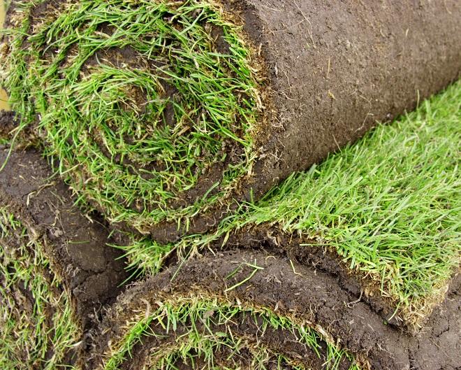 5 zalet trawników z rolki